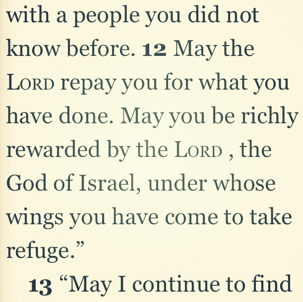 Ruth 2:12 | Daily Bible
